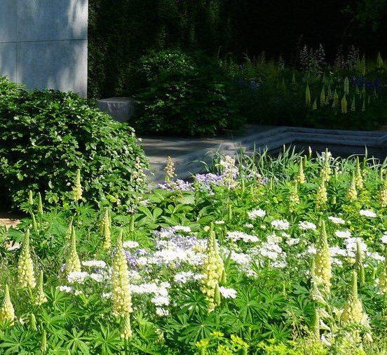 5 Of The Best Ever Chelsea Flower Show Gardens Maxwell Scott Bags
